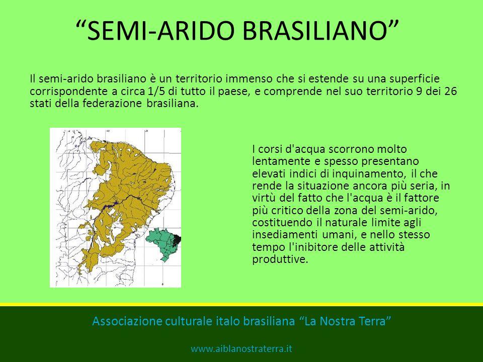 SEMI-ARIDO BRASILIANO Il semi-arido brasiliano è un territorio immenso che si estende su una superficie corrispondente a circa 1/5 di tutto il paese, e comprende nel suo territorio 9 dei 26 stati della federazione brasiliana.