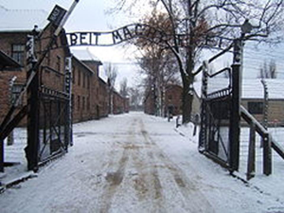 I numeri raccontano … Nei campi di sterminio morirono tra i quattro e i sei milioni di ebrei.