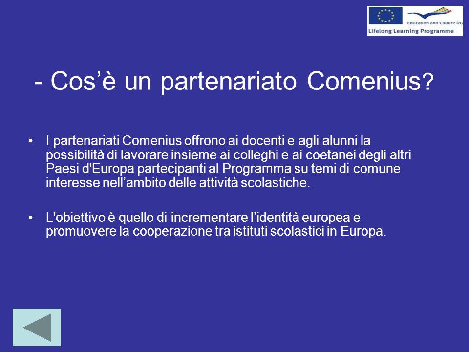 - Cosè un partenariato Comenius .