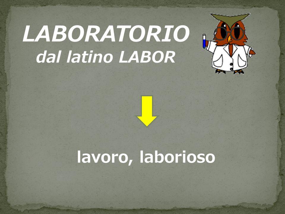 LABORATORIO dal latino LABOR lavoro, laborioso