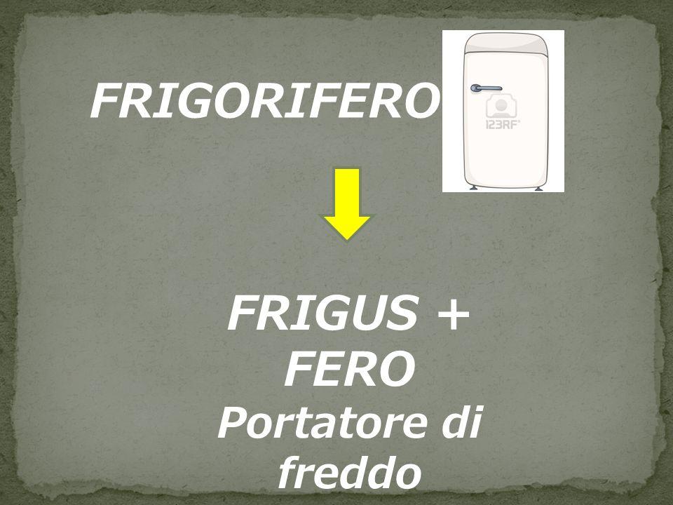 FRIGORIFERO FRIGUS + FERO Portatore di freddo