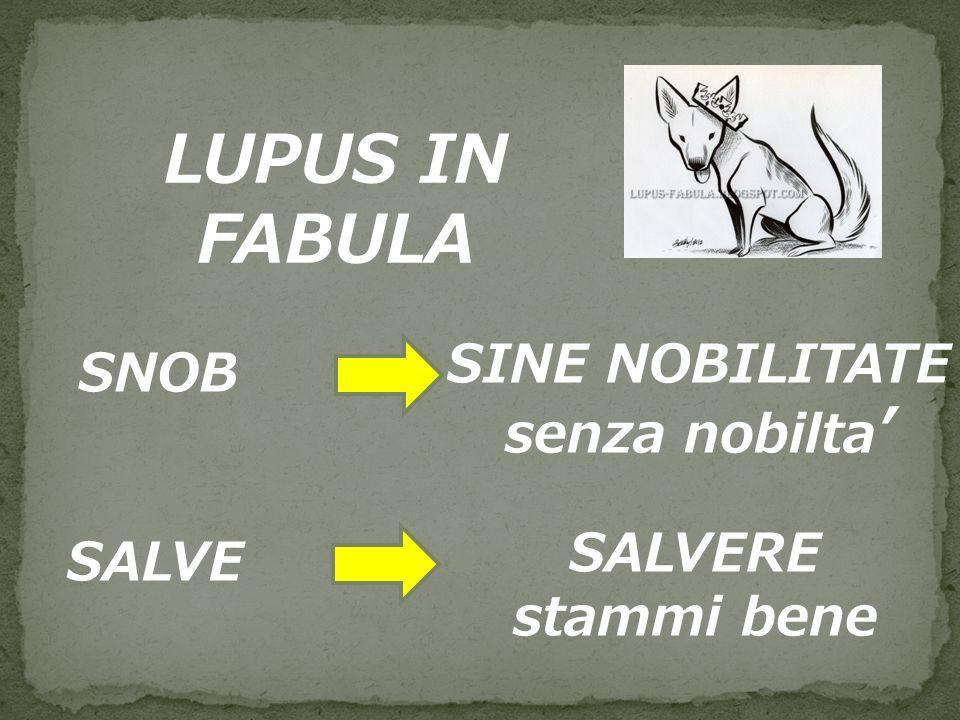 LUPUS IN FABULA SNOB SINE NOBILITATE senza nobilta SALVE SALVERE stammi bene