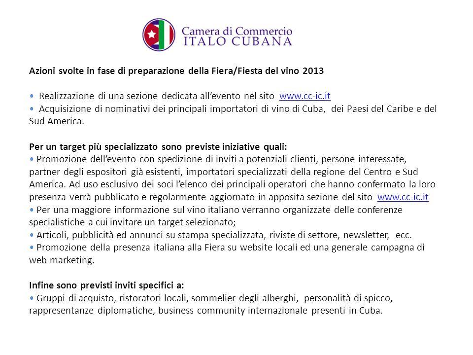 Azioni svolte in fase di preparazione della Fiera/Fiesta del vino 2013 Realizzazione di una sezione dedicata allevento nel sito www.cc-ic.itwww.cc-ic.