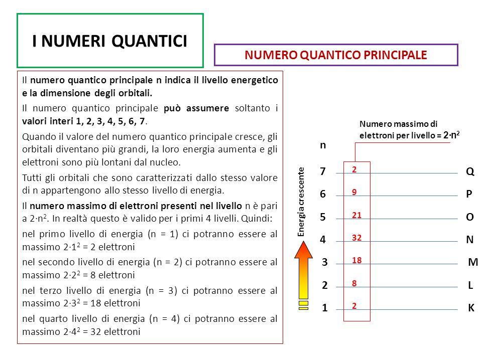 I NUMERI QUANTICI Il numero quantico principale n indica il livello energetico e la dimensione degli orbitali. Il numero quantico principale può assum