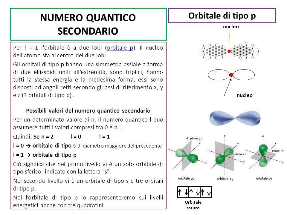 NUMERO QUANTICO SECONDARIO Per l = 1 l'orbitale è a due lobi (orbitale p). Il nucleo dell'atomo sta al centro dei due lobi. Gli orbitali di tipo p han