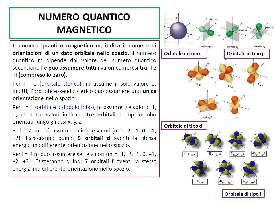 NUMERO QUANTICO MAGNETICO Il numero quantico magnetico m, indica il numero di orientazioni di un dato orbitale nello spazio. Il numero quantico m dipe