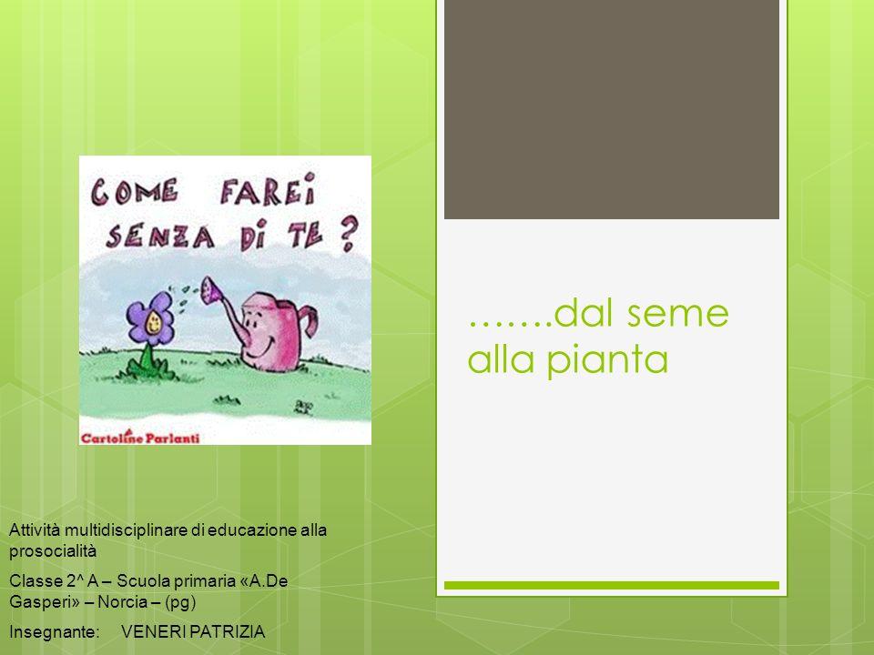 …….dal seme alla pianta Attività multidisciplinare di educazione alla prosocialità Classe 2^ A – Scuola primaria «A.De Gasperi» – Norcia – (pg) Insegn