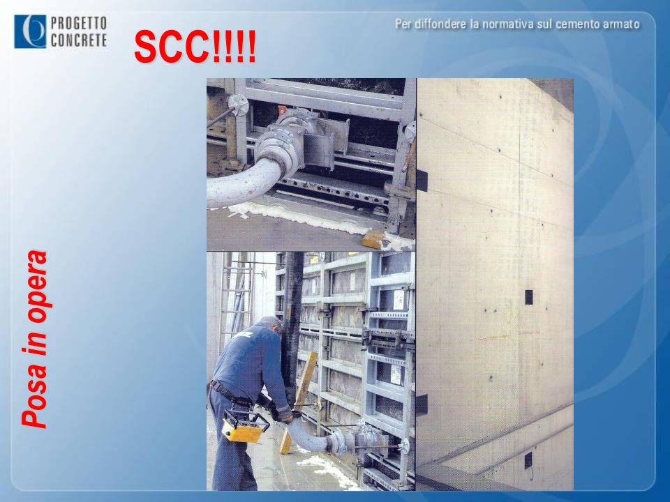 SCC!!!!