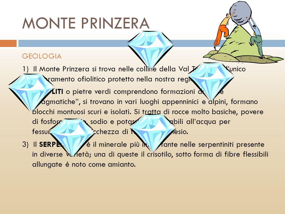 MONTE PRINZERA GEOLOGIA 1) Il Monte Prinzera si trova nelle colline della Val Taro ed è lunico affioramento ofiolitico protetto nella nostra regione.