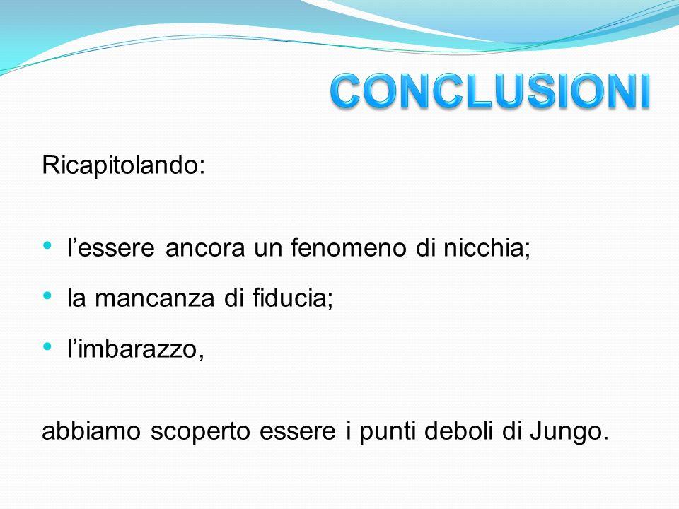 Ricapitolando: lessere ancora un fenomeno di nicchia; la mancanza di fiducia; limbarazzo, abbiamo scoperto essere i punti deboli di Jungo.