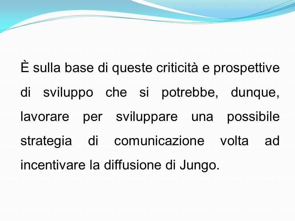 È sulla base di queste criticità e prospettive di sviluppo che si potrebbe, dunque, lavorare per sviluppare una possibile strategia di comunicazione v