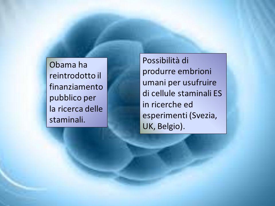 Obama ha reintrodotto il finanziamento pubblico per la ricerca delle staminali.