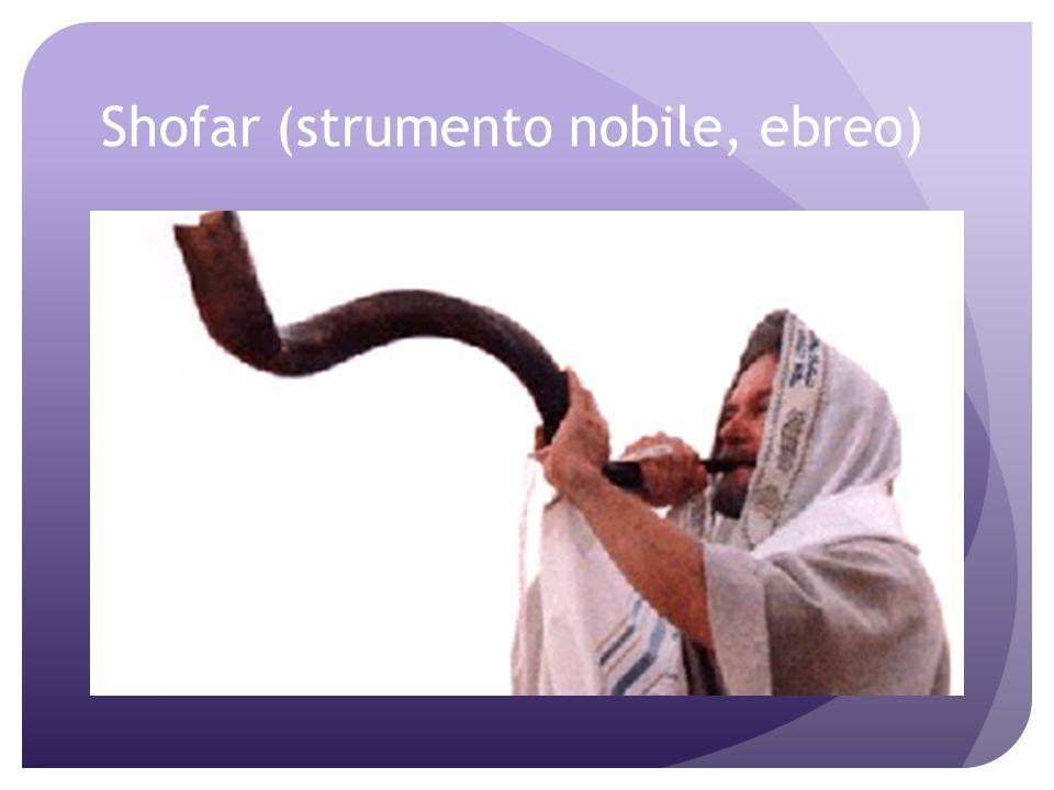 Gli Ebrei Per gli Ebrei gli strumenti musicali erano classificati in tre categorie associate direttamente alle varie caste sociali: i corni e le tromb