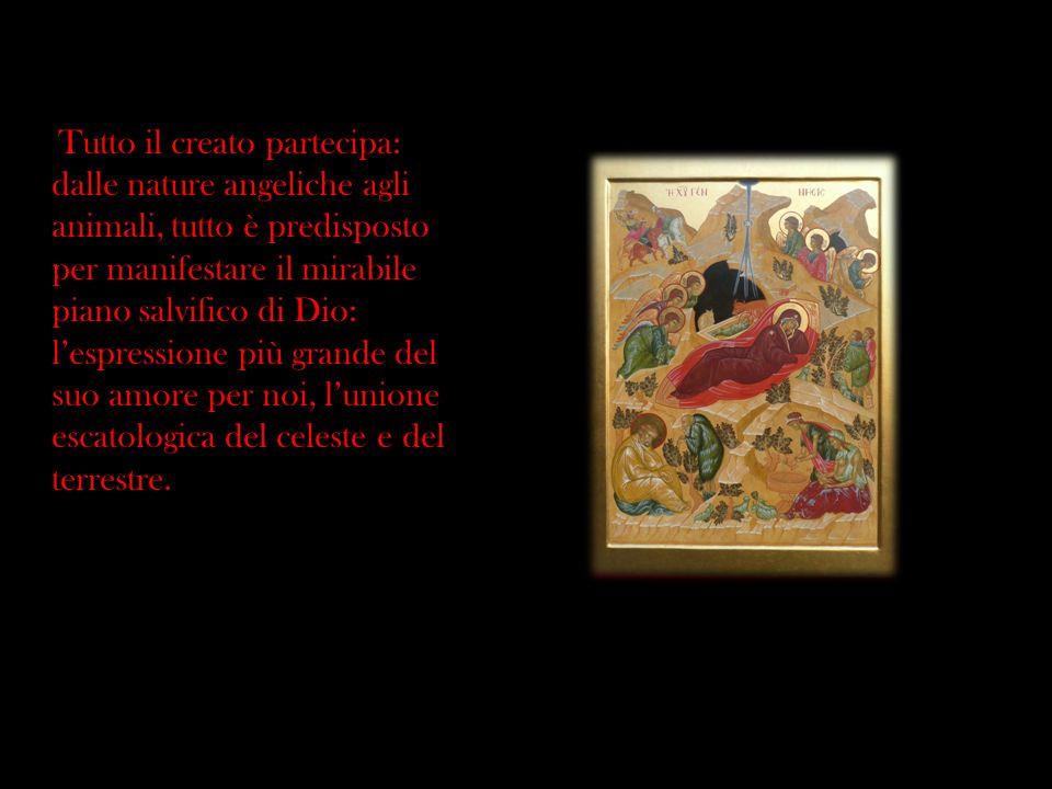 Tutto il creato partecipa: dalle nature angeliche agli animali, tutto è predisposto per manifestare il mirabile piano salvifico di Dio: lespressione p