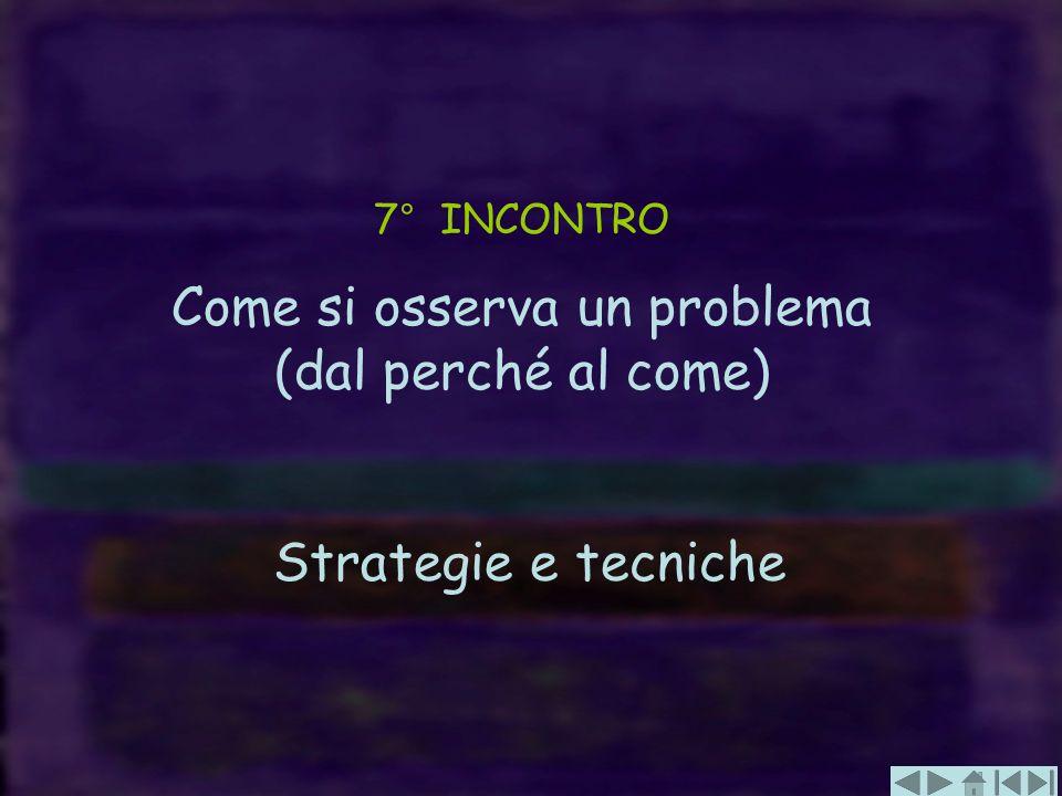 7° INCONTRO Come si osserva un problema (dal perché al come) Strategie e tecniche