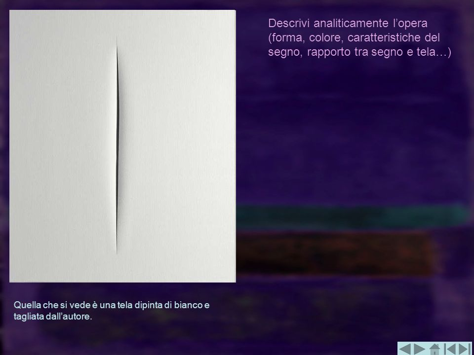 Descrivi analiticamente lopera (forma, colore, caratteristiche del segno, rapporto tra segno e tela…) Quella che si vede è una tela dipinta di bianco