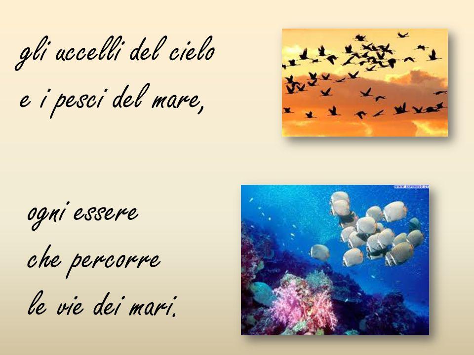 gli uccelli del cielo e i pesci del mare, ogni essere che percorre le vie dei mari.