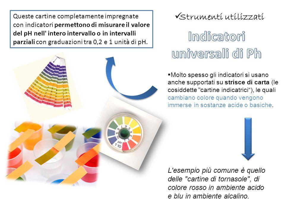 Molto spesso gli indicatori si usano anche supportati su strisce di carta (le cosiddette