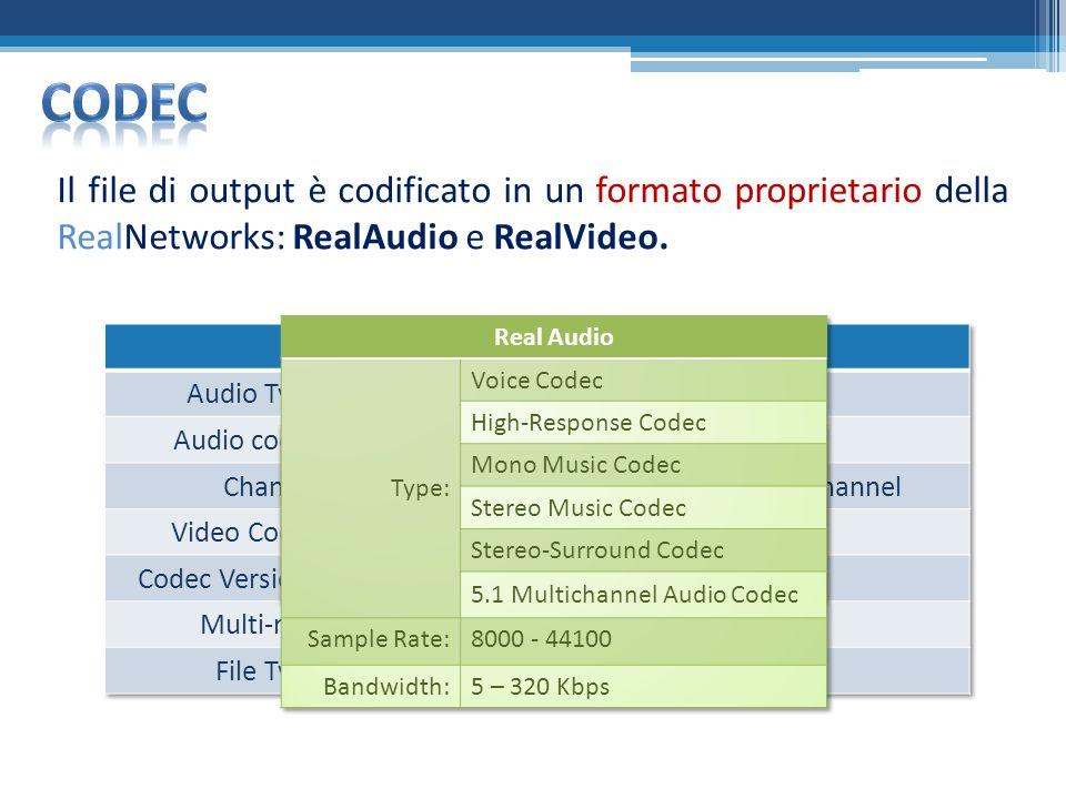Il file di output è codificato in un formato proprietario della RealNetworks: RealAudio e RealVideo.