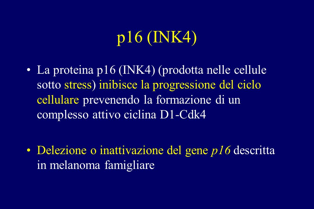 p16 (INK4) La proteina p16 (INK4) (prodotta nelle cellule sotto stress) inibisce la progressione del ciclo cellulare prevenendo la formazione di un co