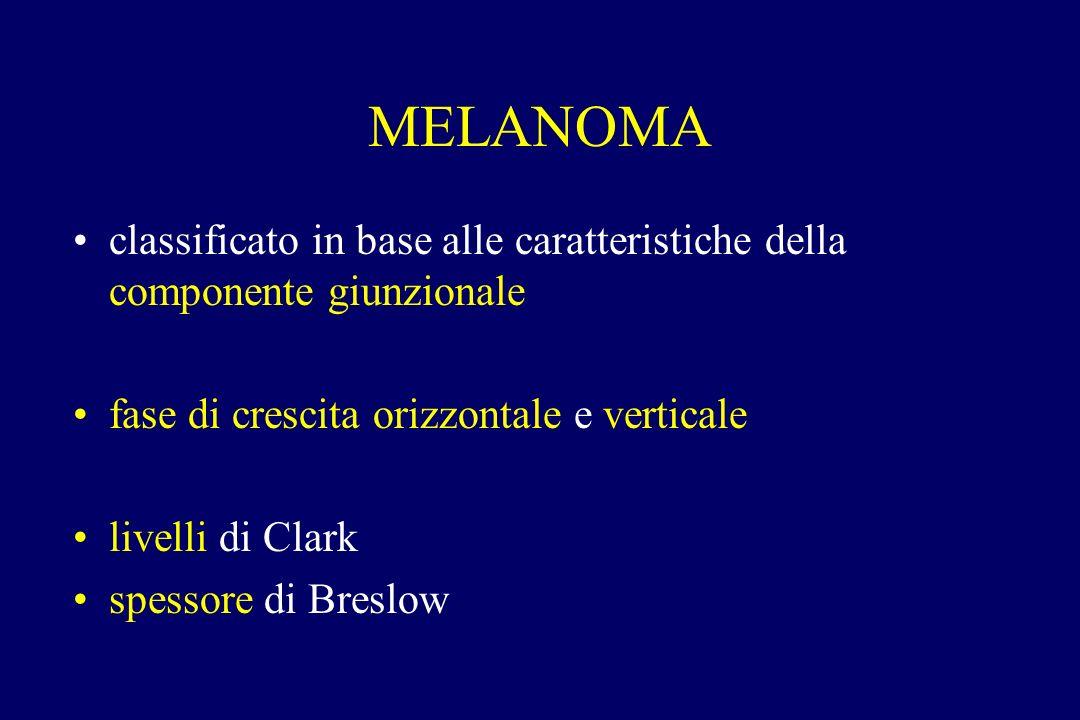 MELANOMA classificato in base alle caratteristiche della componente giunzionale fase di crescita orizzontale e verticale livelli di Clark spessore di