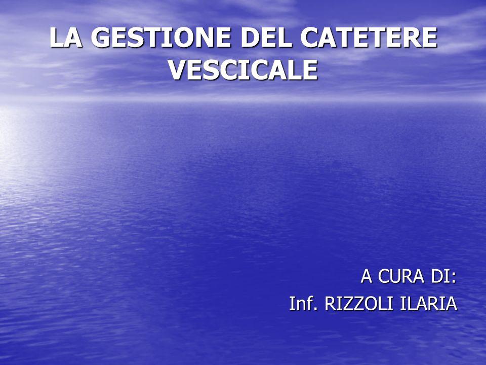 LA GESTIONE DEL CATETERE VESCICALE A CURA DI: Inf. RIZZOLI ILARIA