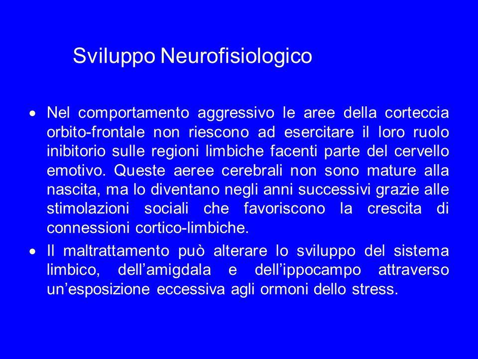 Sviluppo Neurofisiologico Nel comportamento aggressivo le aree della corteccia orbito-frontale non riescono ad esercitare il loro ruolo inibitorio sul