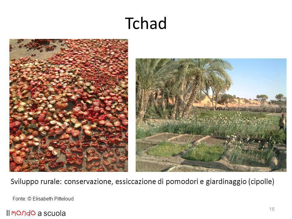 16 Sviluppo rurale: conservazione, essiccazione di pomodori e giardinaggio (cipolle) Fonte: © Elisabeth Pitteloud Tchad