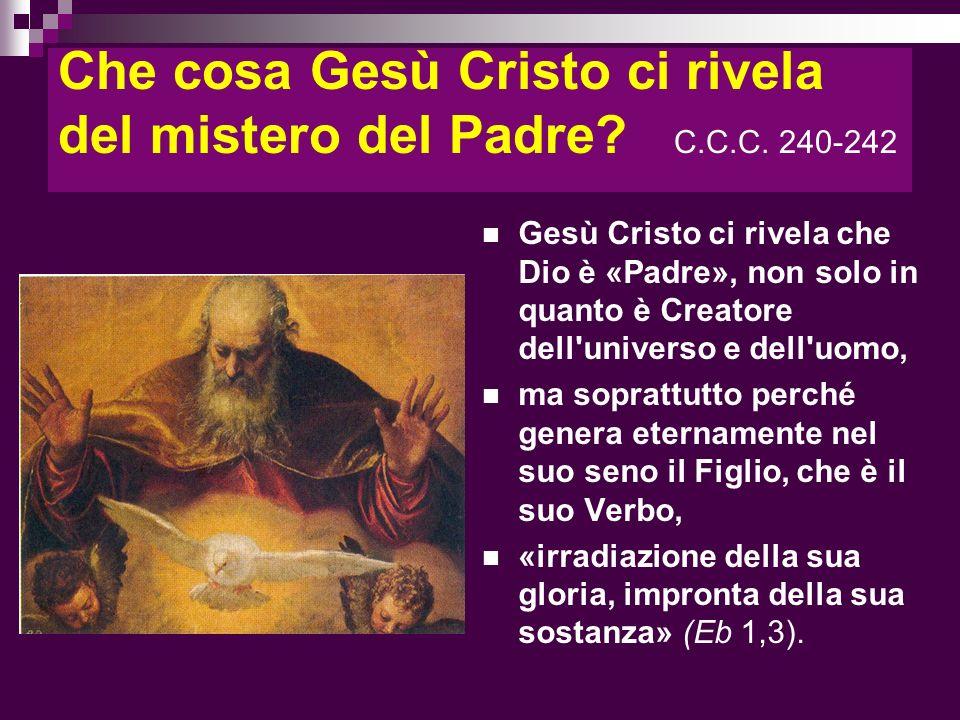 Che cosa Gesù Cristo ci rivela del mistero del Padre? C.C.C. 240-242 Gesù Cristo ci rivela che Dio è «Padre», non solo in quanto è Creatore dell'unive