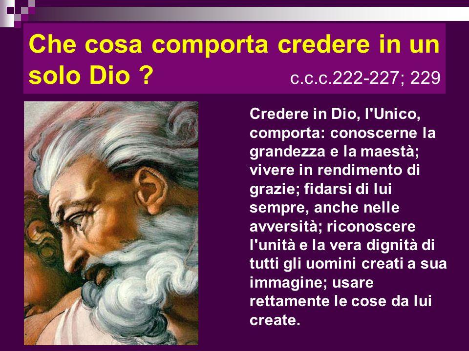 Che cosa comporta credere in un solo Dio ? c.c.c.222-227; 229 Credere in Dio, l'Unico, comporta: conoscerne la grandezza e la maestà; vivere in rendim