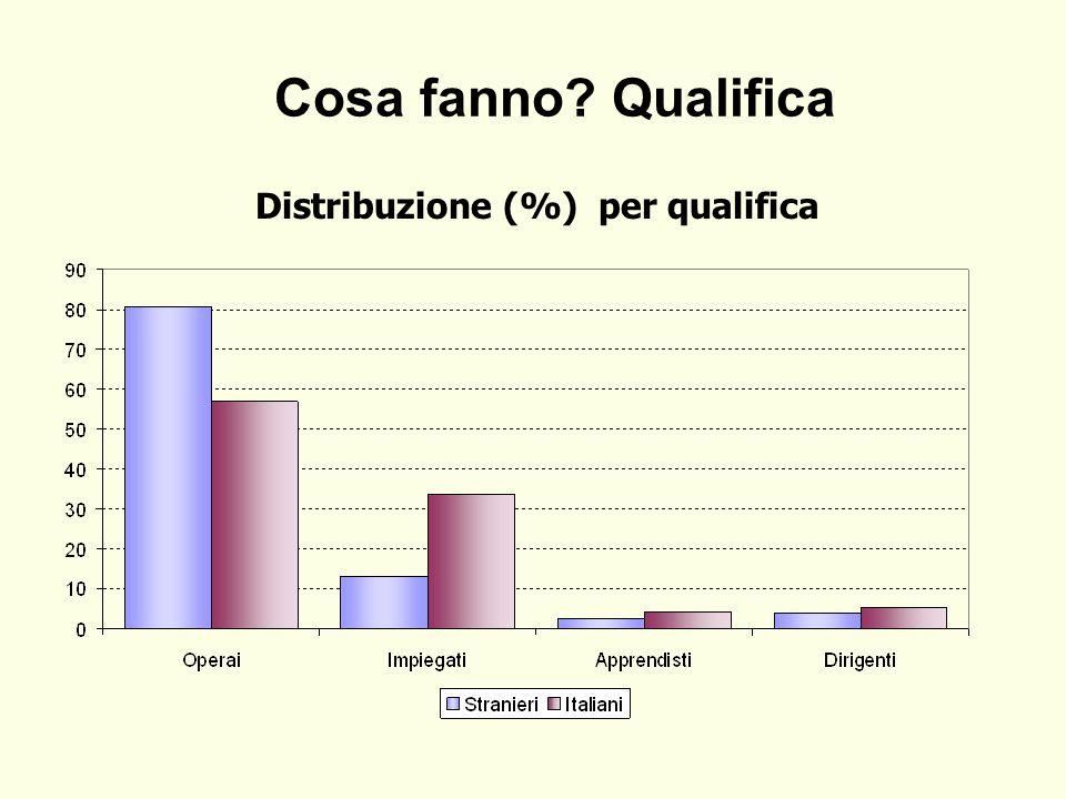 Cosa fanno? Qualifica Distribuzione (%) per qualifica