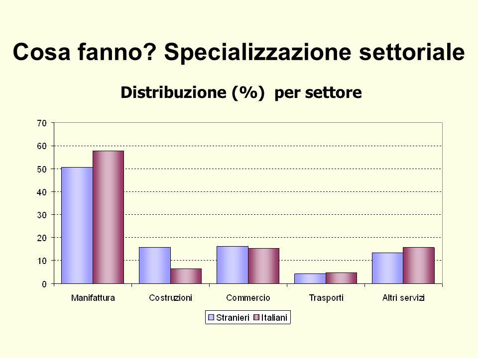 Cosa fanno Specializzazione settoriale Distribuzione (%) per settore