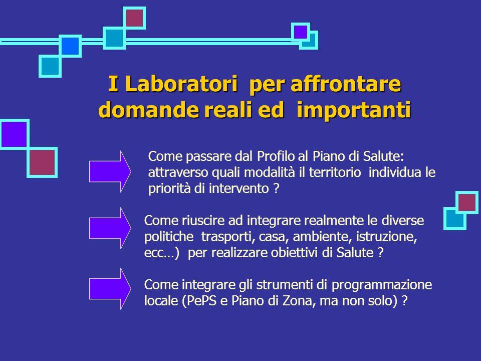 I Laboratori per affrontare domande reali ed importanti Come passare dal Profilo al Piano di Salute: attraverso quali modalità il territorio individua le priorità di intervento .