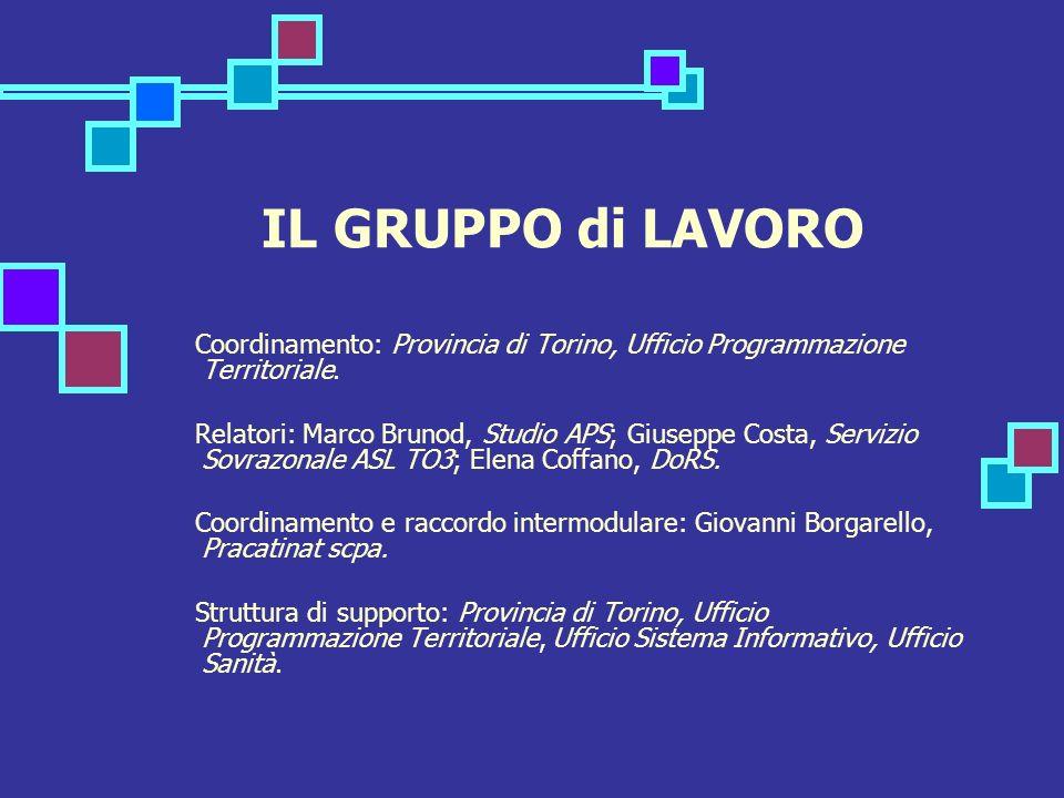IL GRUPPO di LAVORO Coordinamento: Provincia di Torino, Ufficio Programmazione Territoriale. Relatori: Marco Brunod, Studio APS; Giuseppe Costa, Servi