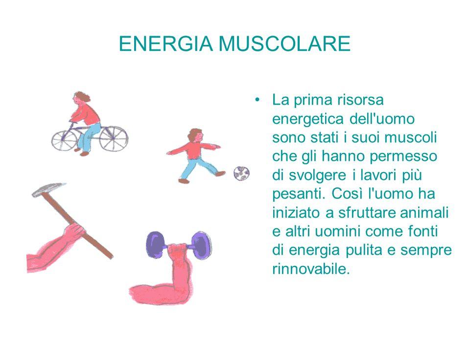 ENERGIA MUSCOLARE La prima risorsa energetica dell'uomo sono stati i suoi muscoli che gli hanno permesso di svolgere i lavori più pesanti. Così l'uomo
