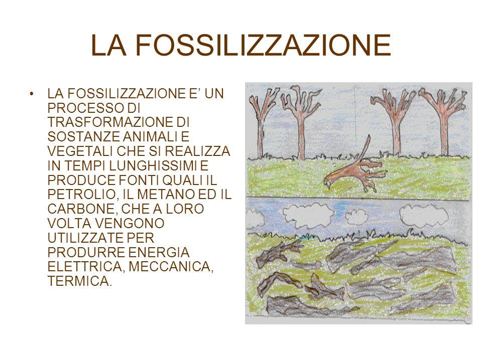 LA FOSSILIZZAZIONE LA FOSSILIZZAZIONE E UN PROCESSO DI TRASFORMAZIONE DI SOSTANZE ANIMALI E VEGETALI CHE SI REALIZZA IN TEMPI LUNGHISSIMI E PRODUCE FO