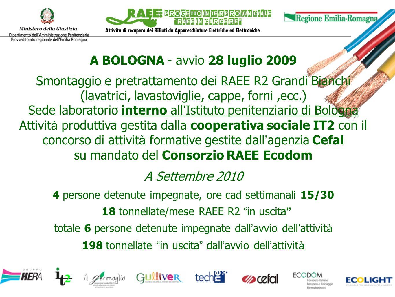 A BOLOGNA - avvio 28 luglio 2009 Smontaggio e pretrattamento dei RAEE R2 Grandi Bianchi (lavatrici, lavastoviglie, cappe, forni,ecc.) Sede laboratorio