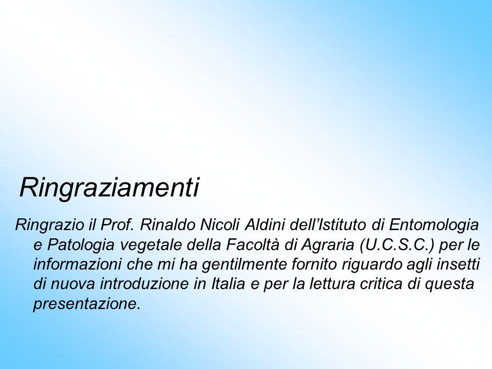 Ringraziamenti Ringrazio il Prof. Rinaldo Nicoli Aldini dellIstituto di Entomologia e Patologia vegetale della Facoltà di Agraria (U.C.S.C.) per le in