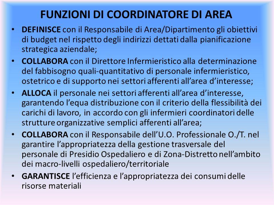 FUNZIONI DI COORDINATORE DI AREA DEFINISCE con il Responsabile di Area/Dipartimento gli obiettivi di budget nel rispetto degli indirizzi dettati dalla