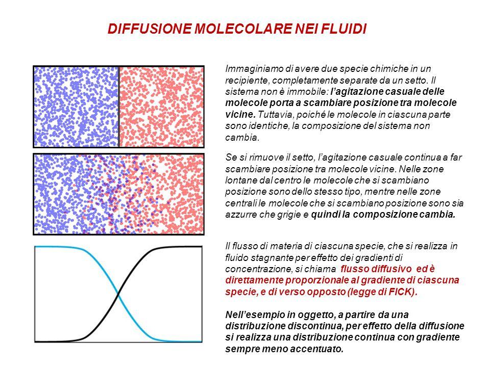 Se si rimuove il setto, lagitazione casuale continua a far scambiare posizione tra molecole vicine. Nelle zone lontane dal centro le molecole che si s