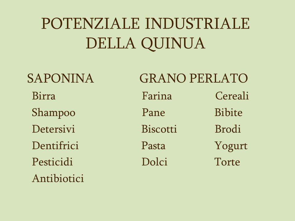 POTENZIALE INDUSTRIALE DELLA QUINUA SAPONINA GRANO PERLATO Birra Farina Cereali Shampoo Pane Bibite Detersivi Biscotti Brodi Dentifrici Pasta Yogurt P