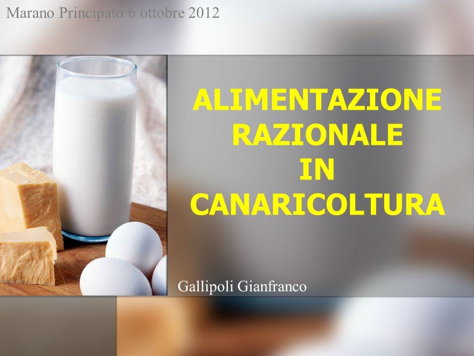 ALIMENTAZIONE RAZIONALE IN CANARICOLTURA Gallipoli Gianfranco Marano Principato 6 ottobre 2012