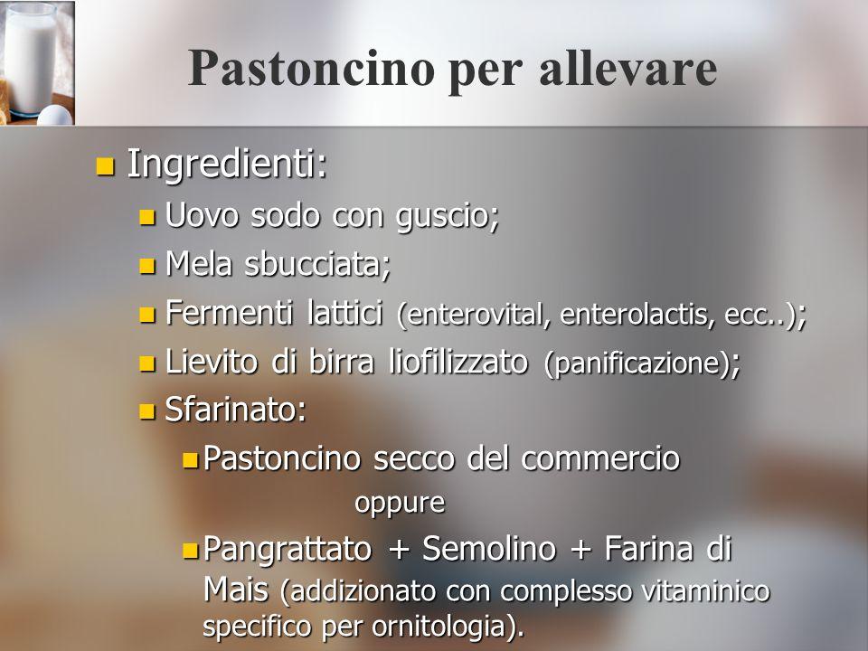 Pastoncino per allevare Ingredienti: Ingredienti: Uovo sodo con guscio; Uovo sodo con guscio; Mela sbucciata; Mela sbucciata; Fermenti lattici (entero