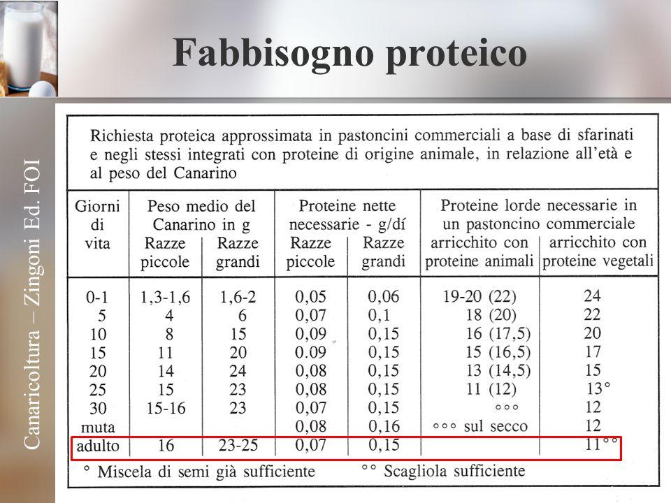 Fabbisogno proteico Canaricoltura – Zingoni Ed. FOI