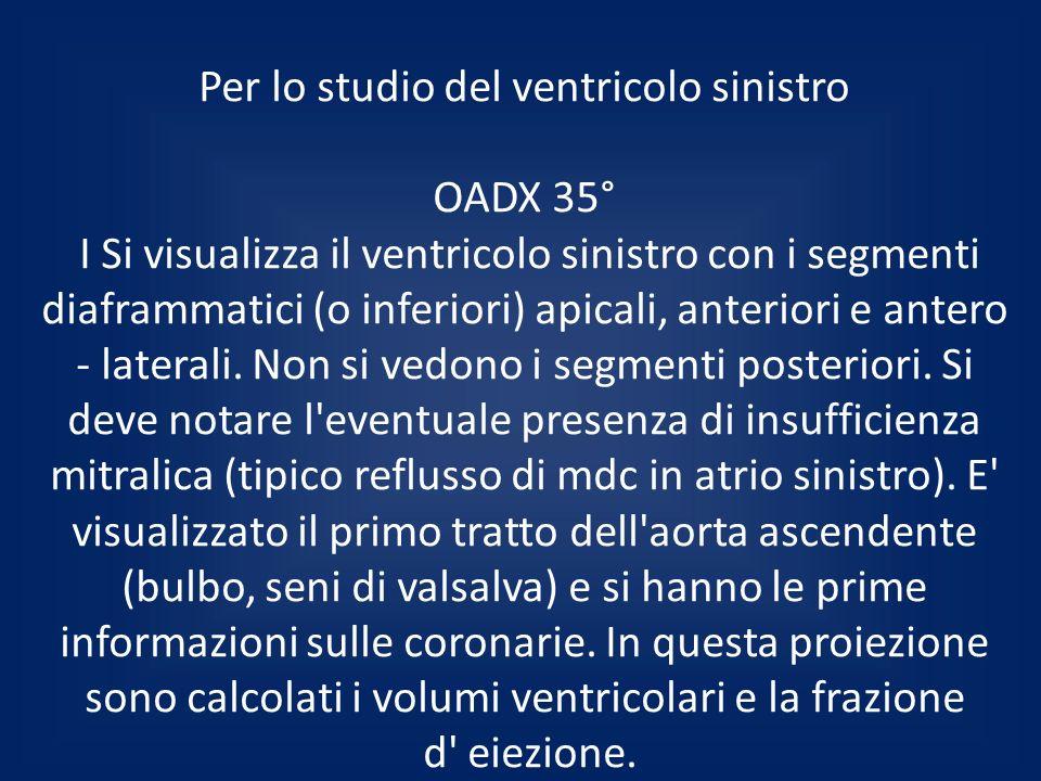 Per lo studio del ventricolo sinistro OADX 35° I Si visualizza il ventricolo sinistro con i segmenti diaframmatici (o inferiori) apicali, anteriori e