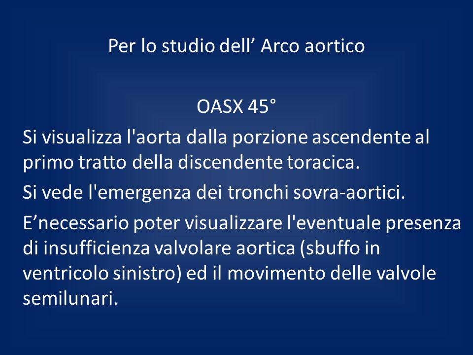 Per lo studio dell Arco aortico OASX 45° Si visualizza l'aorta dalla porzione ascendente al primo tratto della discendente toracica. Si vede l'emergen
