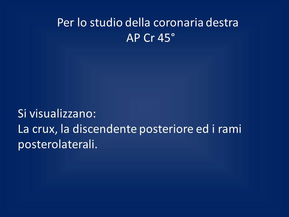 Per lo studio della coronaria destra AP Cr 45° Si visualizzano: La crux, la discendente posteriore ed i rami posterolaterali.