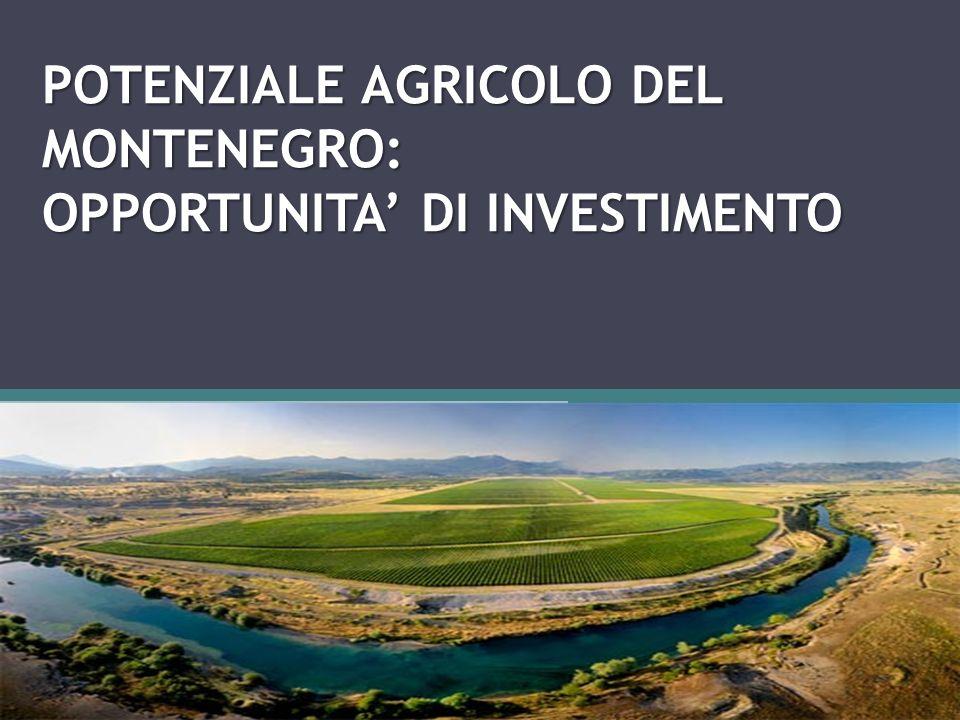 MONTENEGRO Caratteristiche principali del Montenegro superficie - 13.812 km2 lunghezza della costa - 293,5 km popolazione - 625.000 abitanti densità abitativa - 50 ab./km2 PIL nominale - 4,3 miliardi EUR Valuta - Euro Terre coltivabili: Superficie adatta per le attivita agricole ammonta intorno a 516.070 ettari, oppure 0,83 ettari pro capite 190.000 ettari delle terre coltivate, oppure 0,30 ettari pro capite