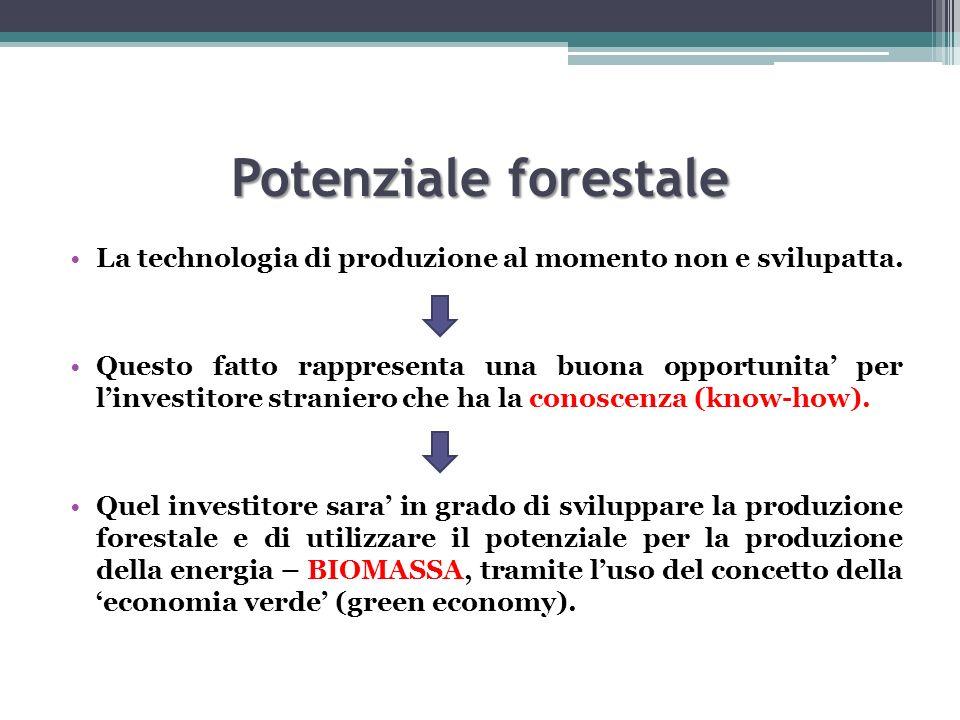 Potenziale forestale La technologia di produzione al momento non e svilupatta. Questo fatto rappresenta una buona opportunita per linvestitore stranie