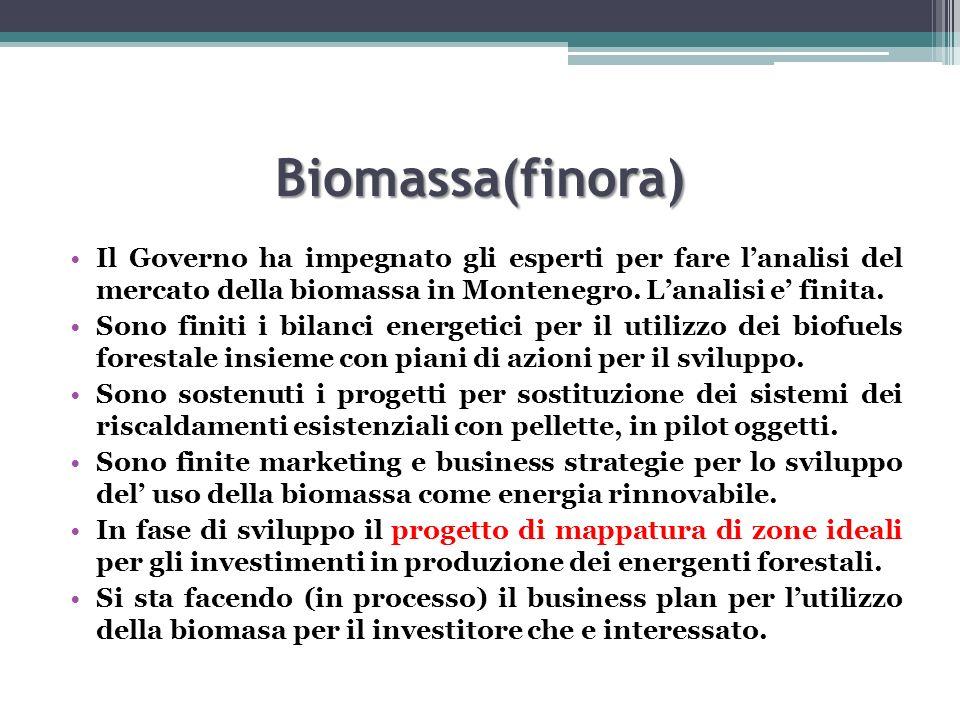 Biomassa(finora) Il Governo ha impegnato gli esperti per fare lanalisi del mercato della biomassa in Montenegro. Lanalisi e finita. Sono finiti i bila